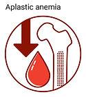 aplastic anemia icon
