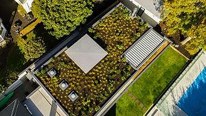 garden roof.jpg