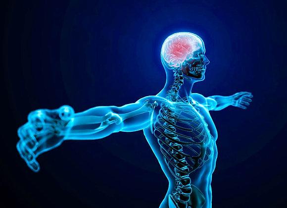 Hypnose & Douleur en Rééducation