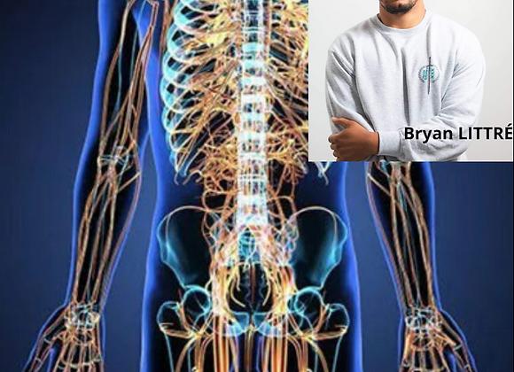 Neurodynamique, Syndromes canalaires & Neuropathies