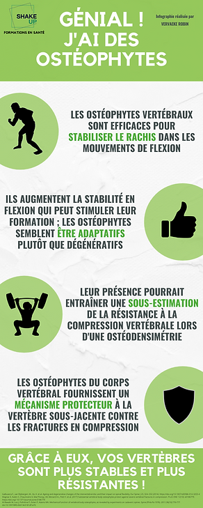 Ostéophyte.png