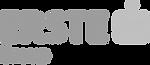 Erste_Bank_logo.png