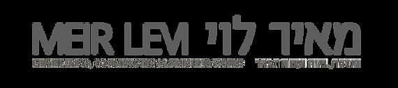 מאיר לוי meir levi  הנדסה בניה וגמר