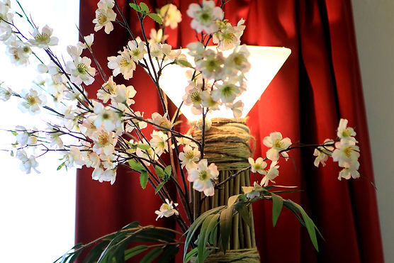 EFT image Chinese blossoms and light