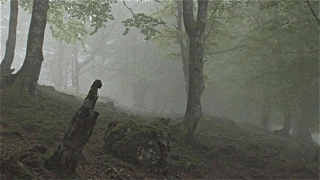 vlcsnap-857074