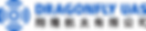DragonFly_CIS-Fomat_V2_H1_WBG.png