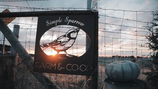 Simple Sparrow Care Farm - Introduction Video
