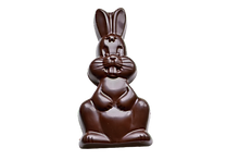 chocolat_004-removebg-preview_edited.png