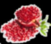 fruit22.png