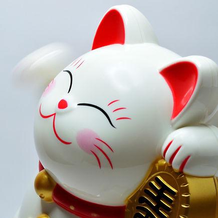 animal-art-asia-932261_edited.jpg