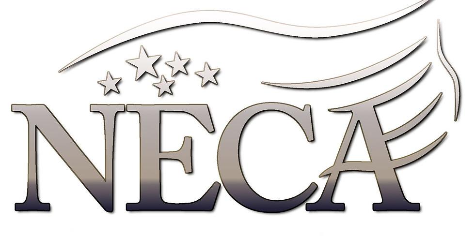NECA Networking Event