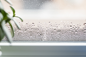 Moisture on Windows