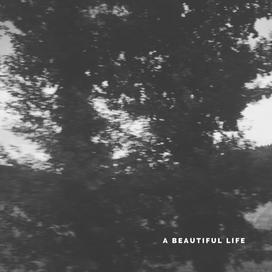 Alfred Gómez Jr. - A Beautiful Life (Single - 2020)