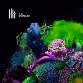 The Spotglow - The Spotglow (LP - 2020)