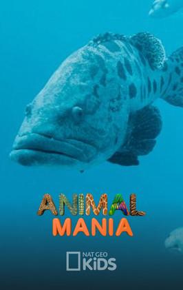 Animal Mania (Serie TV - 2018)