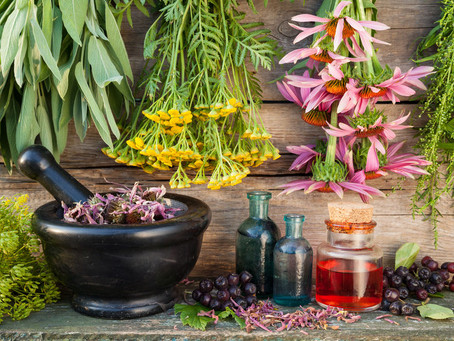 Types of herbal medicine you can make at home and their purpose