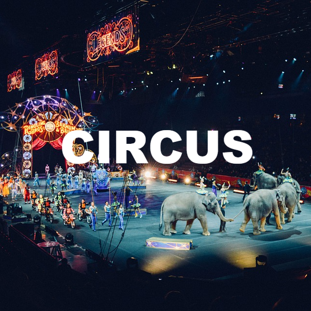 circus_edited