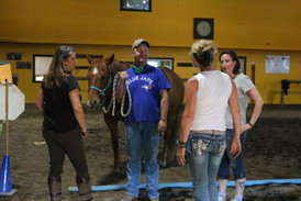 What is your horse telling you?