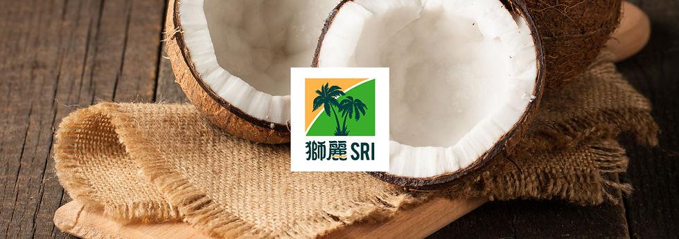 SRI品牌視覺設計
