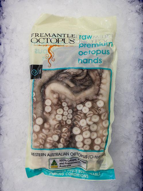 Octopus Hand - Frozen