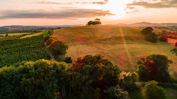 Walnut Farm View