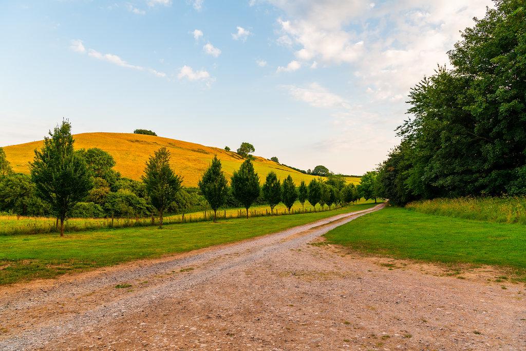 Walnut Farm Driveway