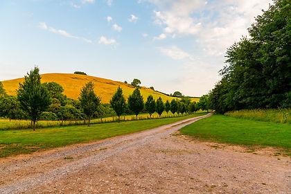 Walnut Farm Driveway.jpg