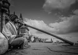 Varanasia 43 wix