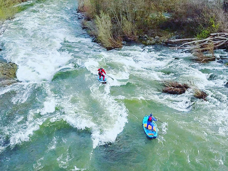 Rogue River Paddle Boarding