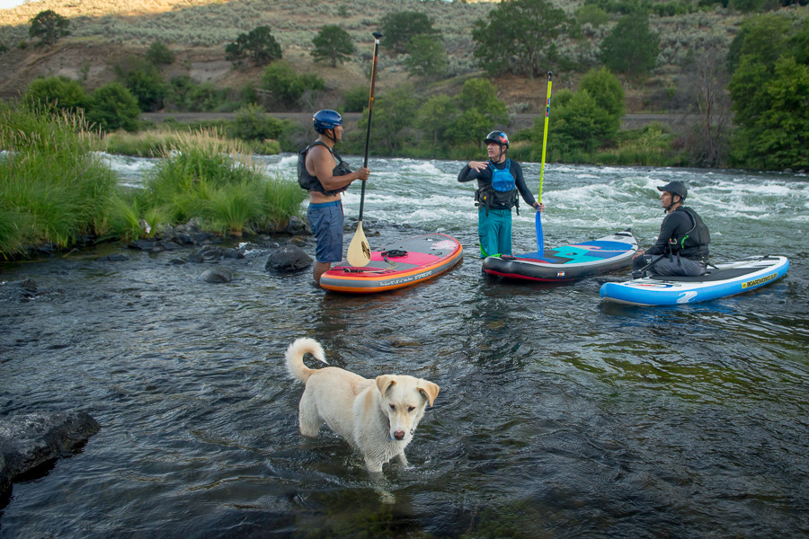 The river paddle boarding scene on the Deschutes  in Maupin, Oregon