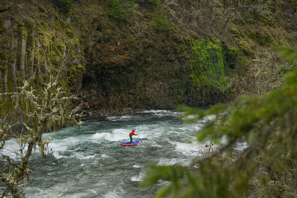 Paul Clark whitewater paddle boarding on the Hood River, Oregon