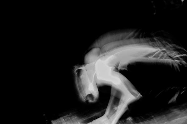 danceexperimental-9.jpg