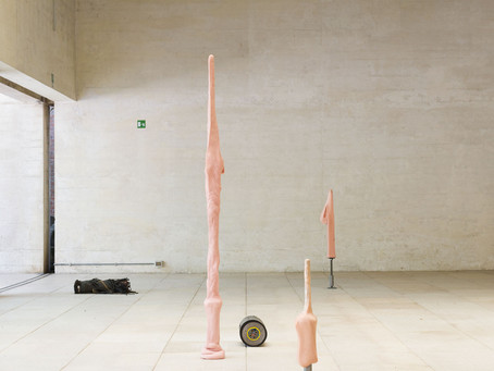 NORDIC PAVILION - La Biennale di Venezia 2017