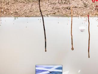 AALTO PAVILION - La Biennale di Venezia 2019