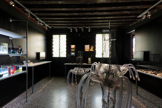 installation view - Azerbaijan Pavilion, La Biennale di Venezia 2015