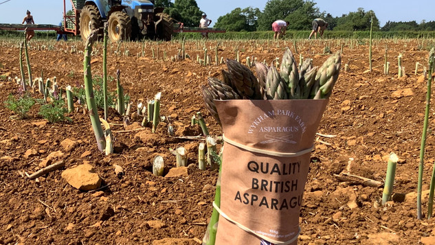 Asparagus from Wykham Park Farm, delivered by mStreet