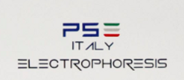 Logo PSE.PNG