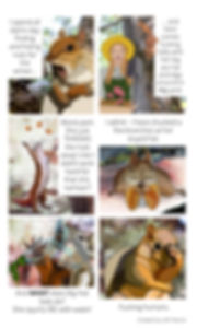SquirrelComic.jpg