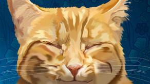 Eine Nachricht von deiner Katze: