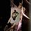 Thumbnail: (Pre-Order) Wayhome Tarot