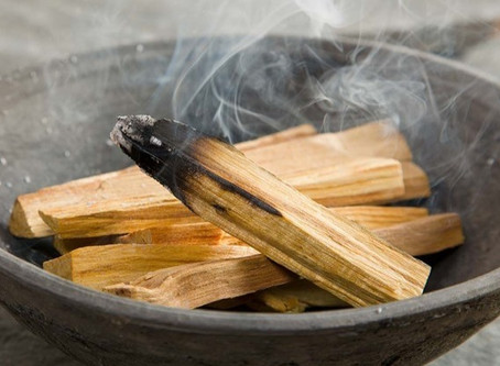 The Low-down on Palo Santo