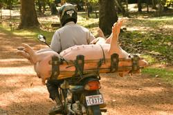 His Last Ride (Cambodia)