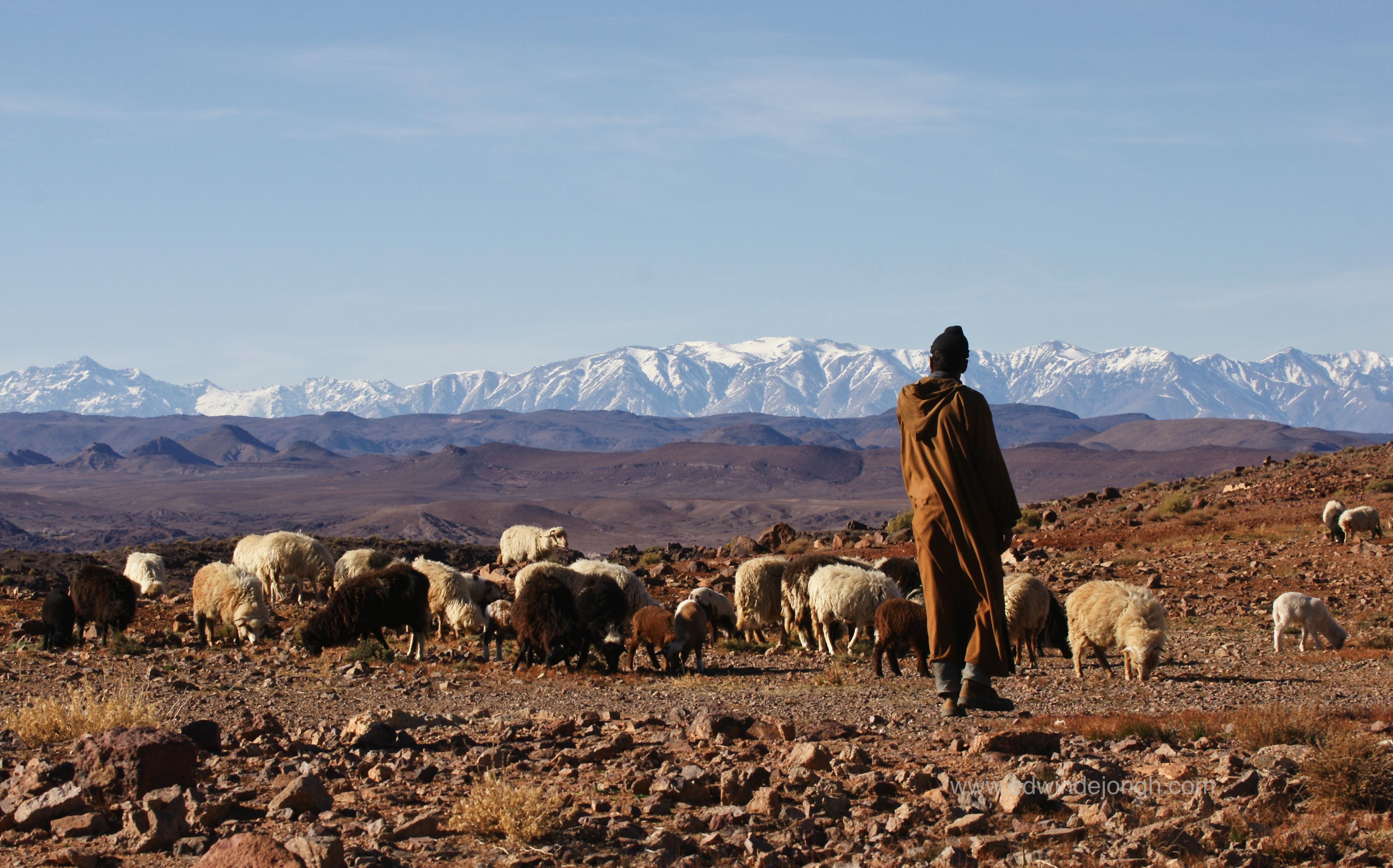Vallee des Dades, Morocco