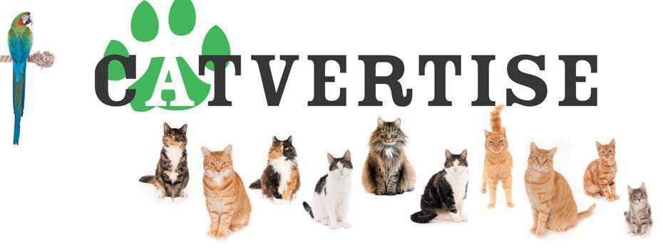 Foto's bij Catvertise logo Facebook