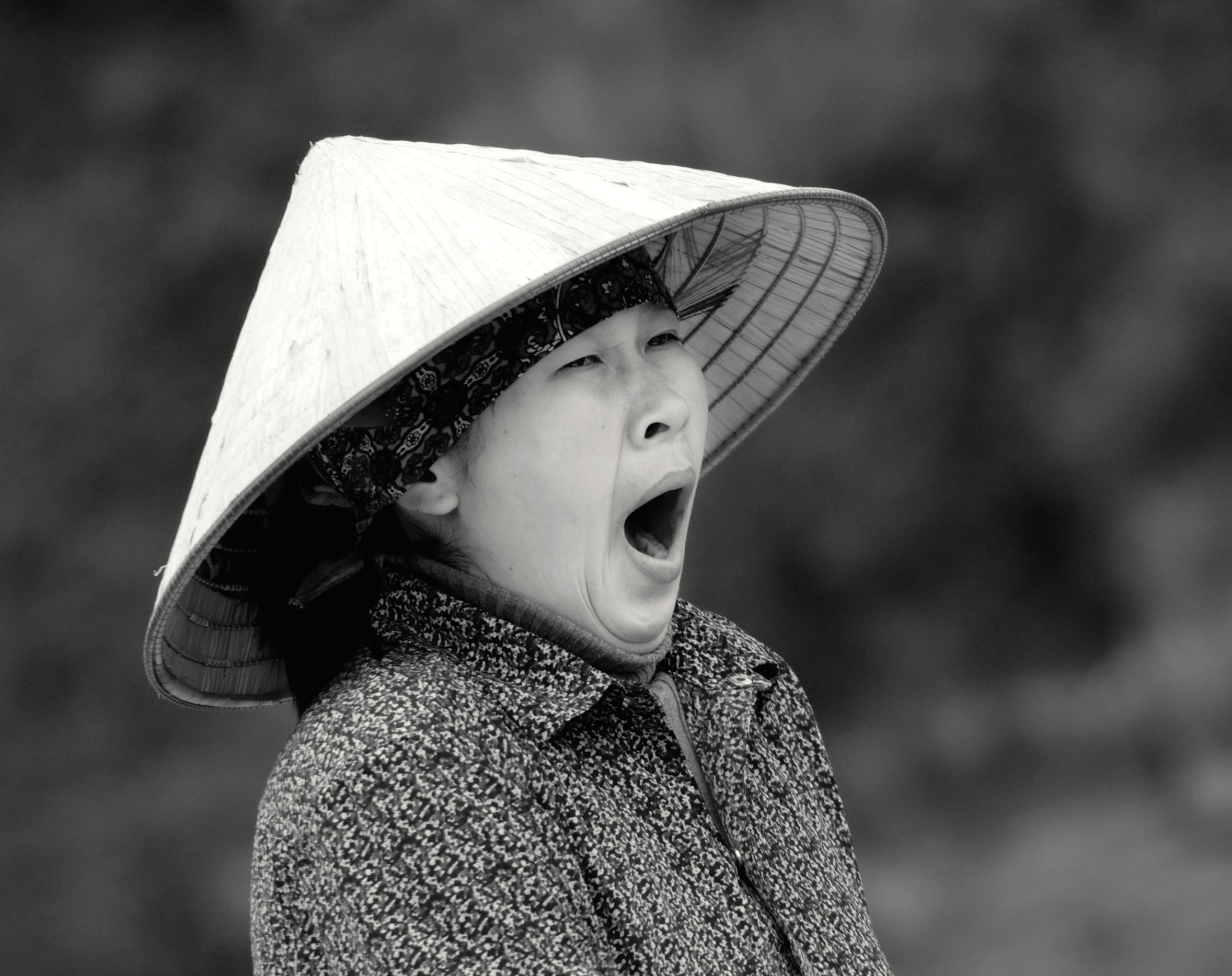 Mrs. Long Yawn (Vietnam)