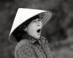 Mrs. Long Yawn (Vietnam)