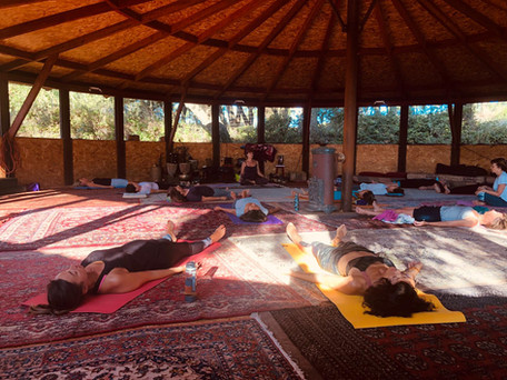 stage yoga été