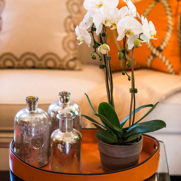 Glen Cove Living Room