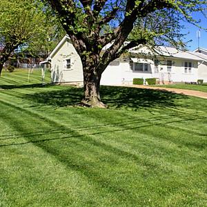 Q&A Lawn Service