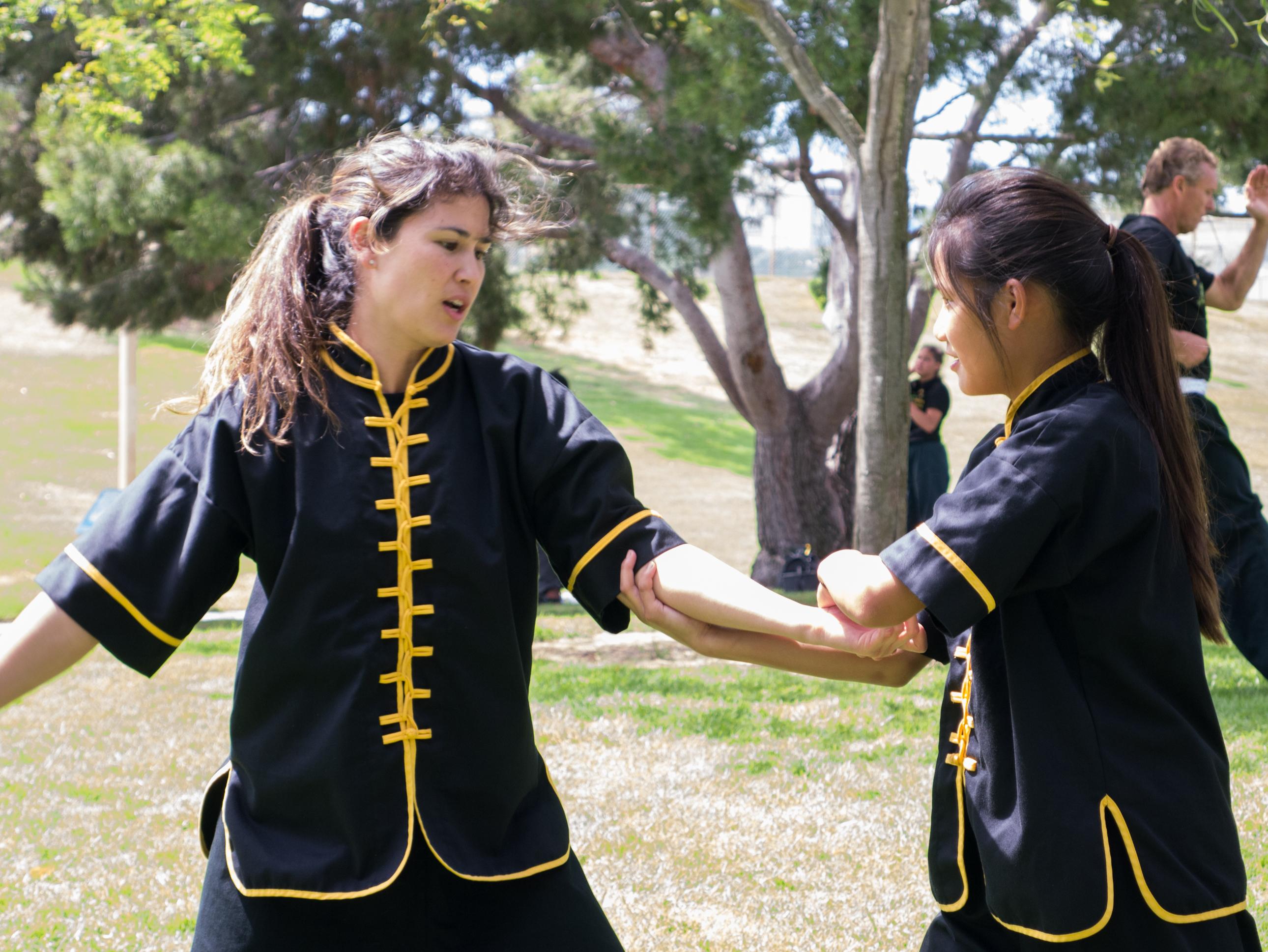 Grandmaster Lee Kam Wing Workshop 2014-65.jpg